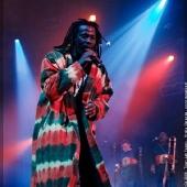 Tiken Jah Fakoly au Festival des Artefacts